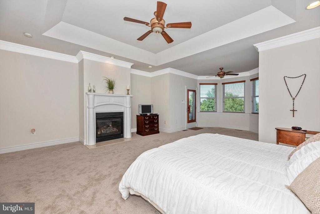 Master Suite w/ Tray Ceiling & Sitting Area - 7525 OLD RECEIVER RD, FREDERICK