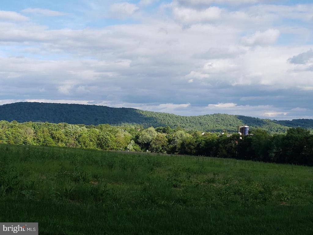 View from Backyard Lot 12 - 12107 PETEY LN, LOVETTSVILLE
