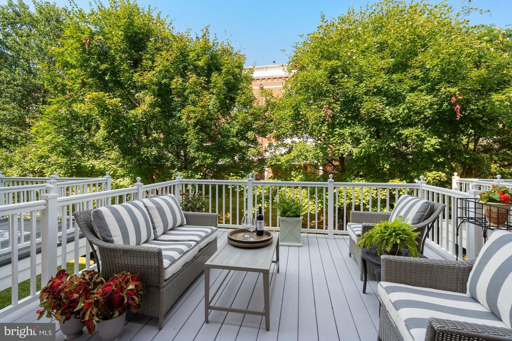 Serene Deck for Deck - perfect for morning Coffee - 12079 CHANCERY STATION CIR, RESTON