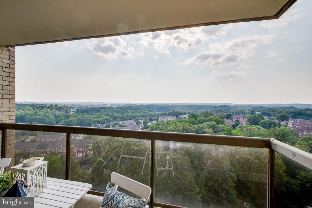View from Balcony - 307 YOAKUM PKWY #1726, ALEXANDRIA