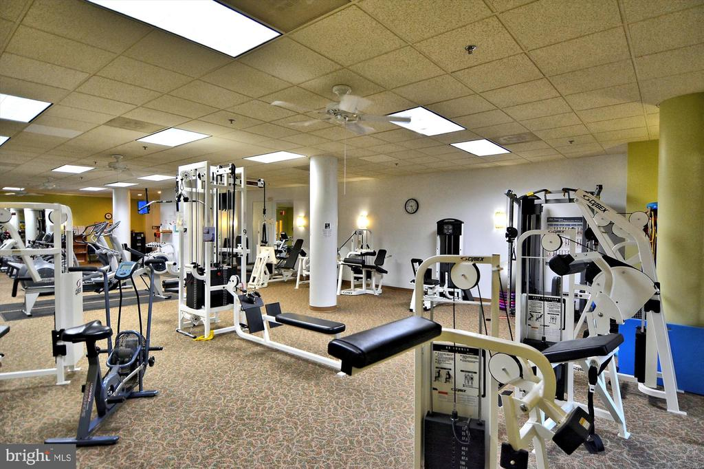 Exercise room with weights and machines - 19375 CYPRESS RIDGE TER #904, LEESBURG