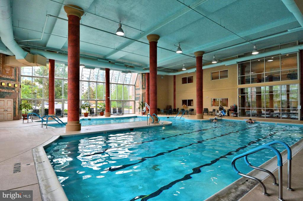 Indoor pool with WARM. water, usually 86 degrees - 19375 CYPRESS RIDGE TER #904, LEESBURG