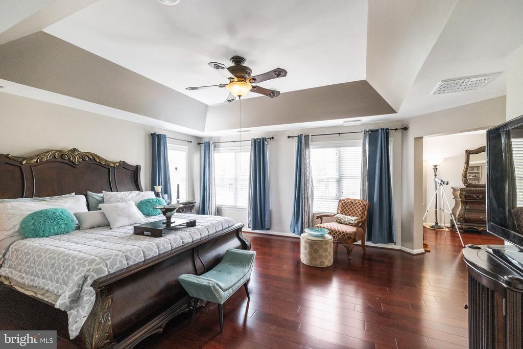 Tray Ceilings in Master Bedroom - 23084 PECOS LN, BRAMBLETON