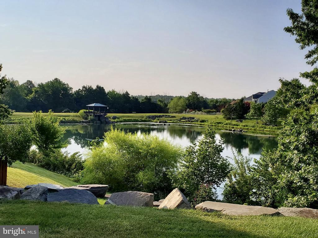 Enjoy the lake - 23084 PECOS LN, BRAMBLETON