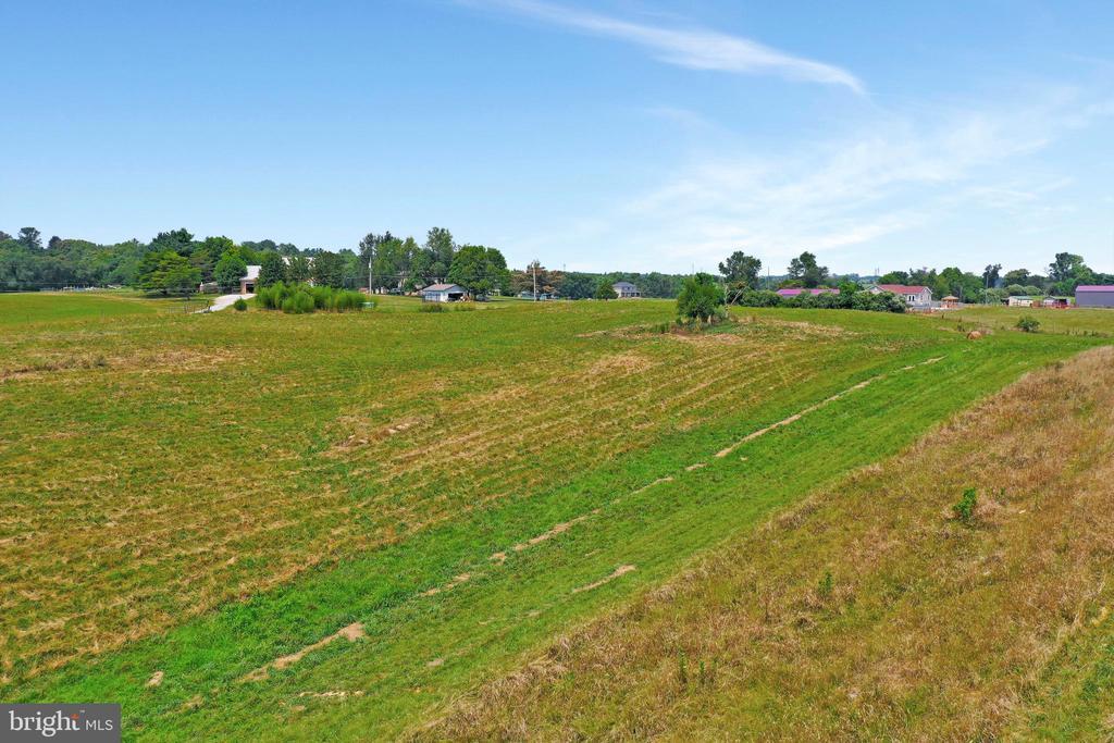2 main pastures - 857 MT HAMMOND, CHARLES TOWN