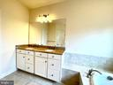 Master Bathroom - 42603 OFFENHAM TER, CHANTILLY