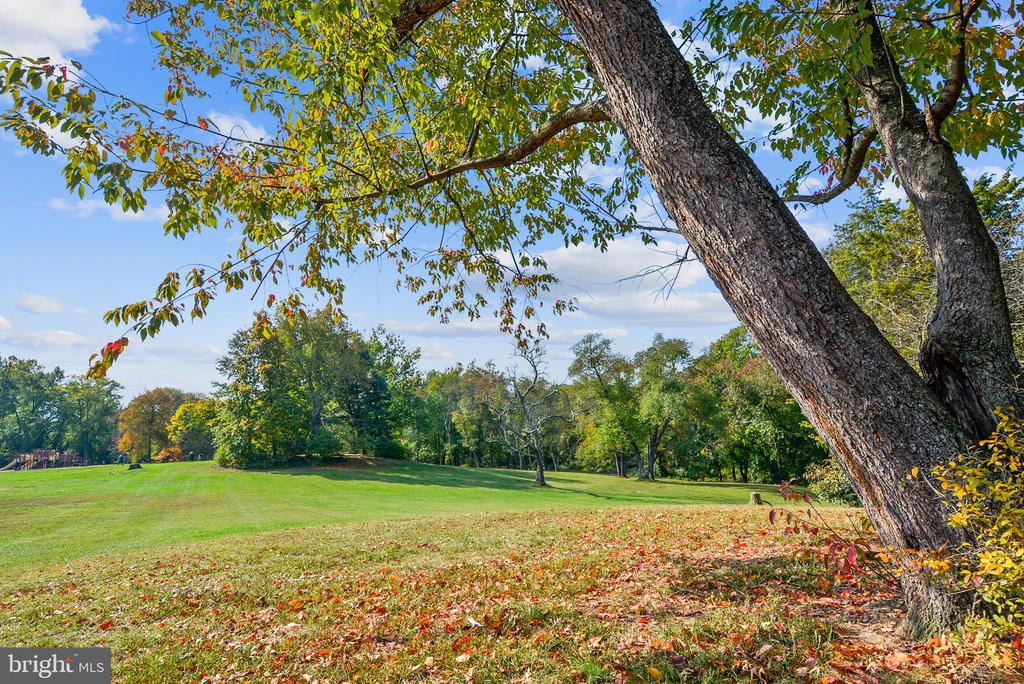 Jefferson Park - 5970 EDGEHILL CT, ALEXANDRIA
