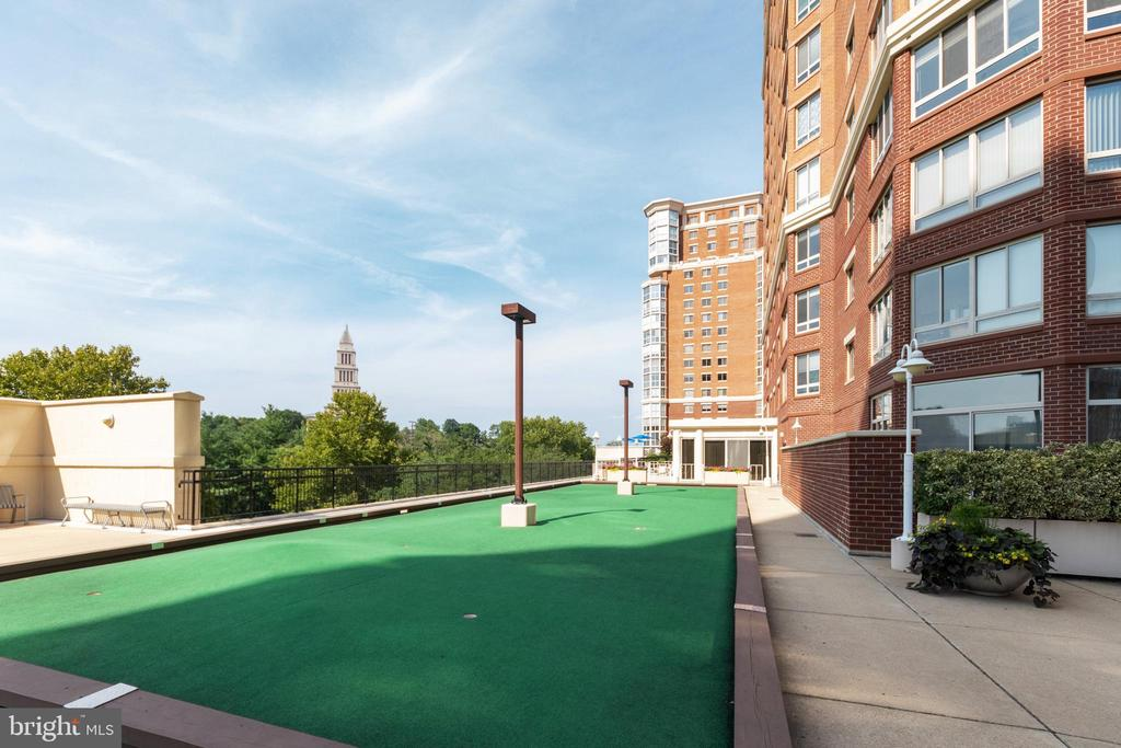Putting green with a view! - 2181 JAMIESON AVE #2010, ALEXANDRIA