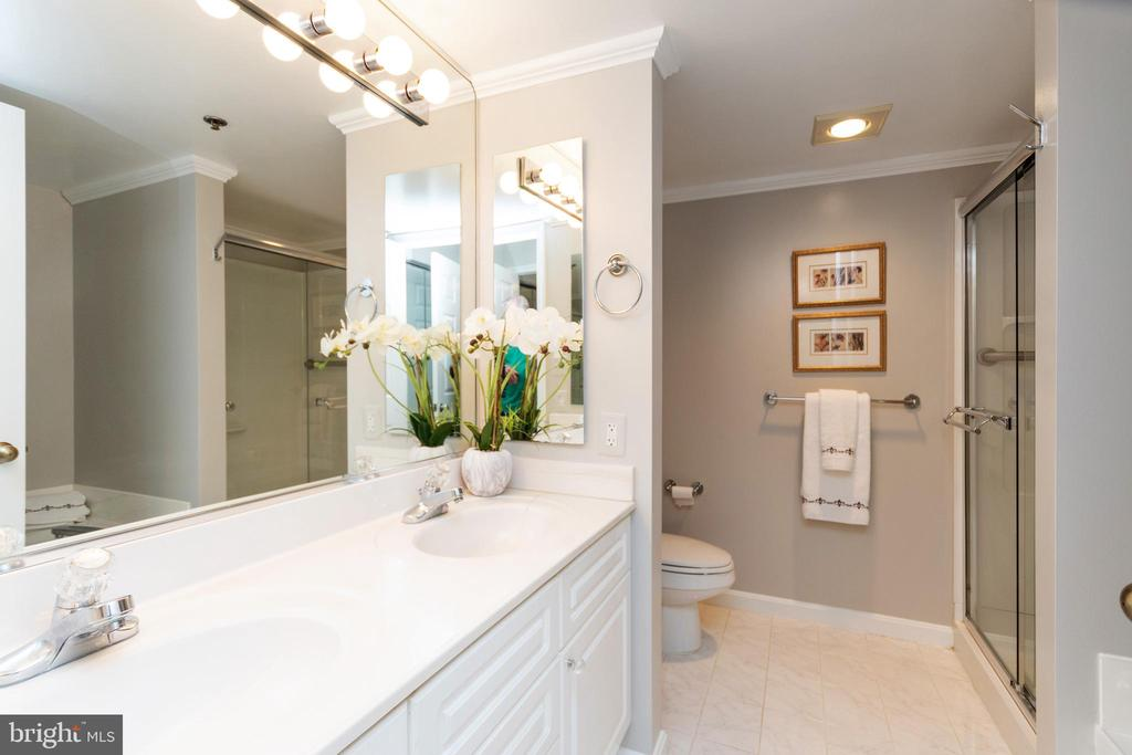 Master bath with shower and separate soaking tub - 2181 JAMIESON AVE #2010, ALEXANDRIA