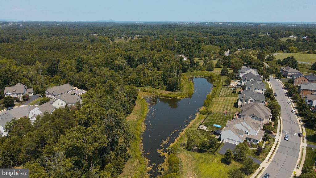 4+Acre Pond Stocked w/Fishes Nestled on Property - 41192 BLACK BRANCH PKWY, LEESBURG