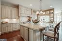 Gourmet Chef's Kitchen - 15830 SPYGLASS HILL LOOP, GAINESVILLE