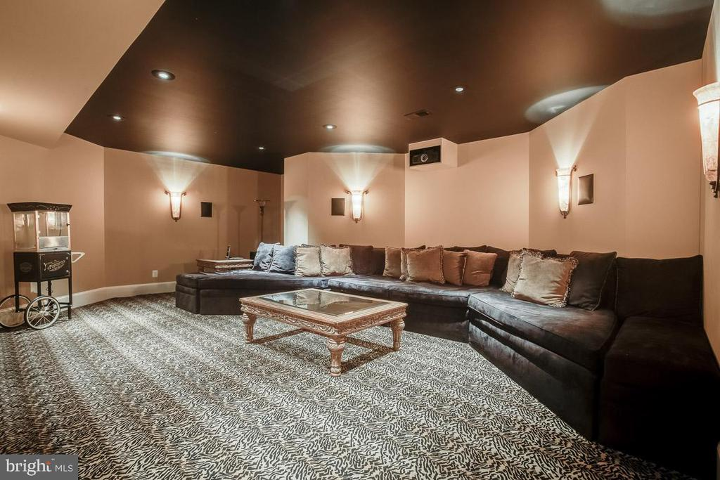 Awesome Media Room - 15830 SPYGLASS HILL LOOP, GAINESVILLE