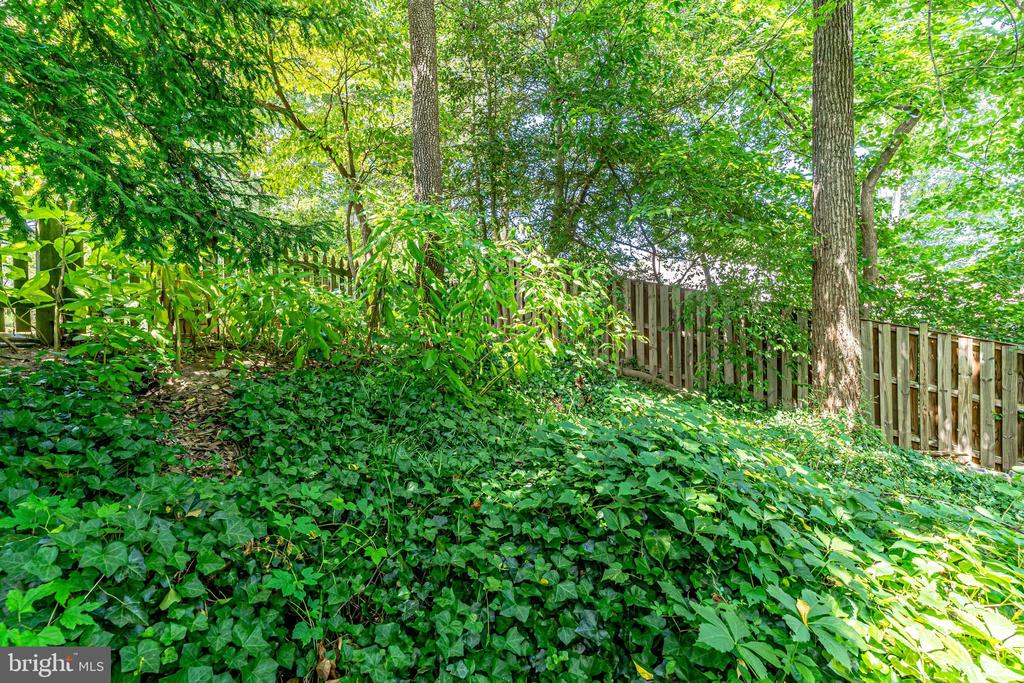 - THE UNIMPROVED LAND NEXT TO 5015 NEWPORT AVE, BETHESDA
