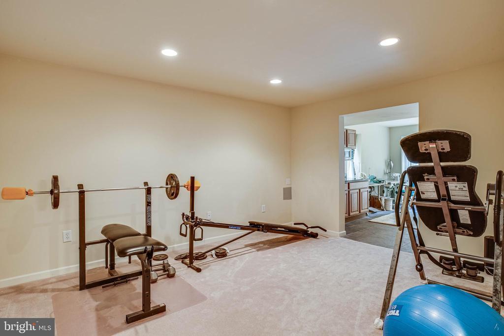 Basement - gym or den - 8300 MUSKET RIDGE LN, FREDERICKSBURG