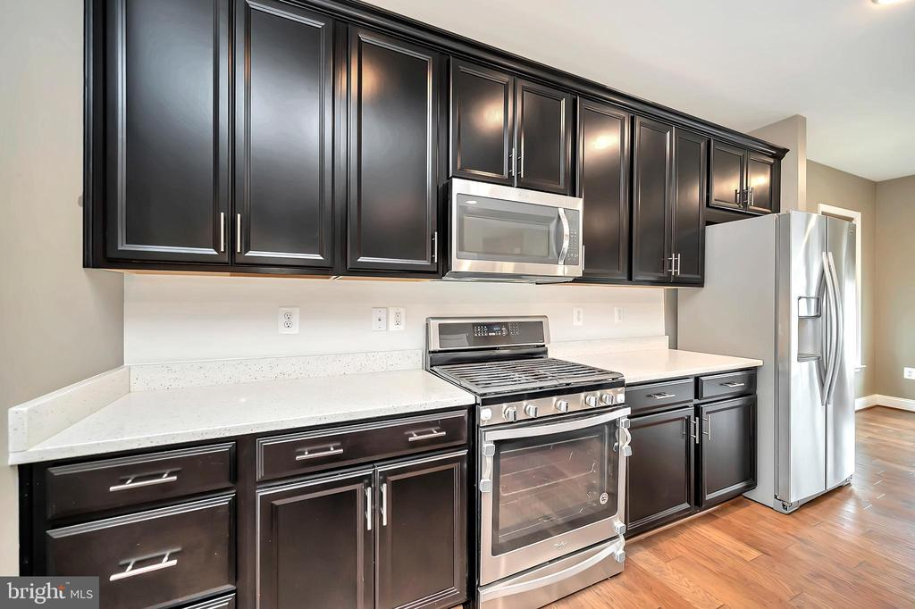 Kitchen - Stainless Steel Appliances - 17359 REDSHANK RD, DUMFRIES