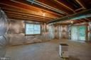 Walk-out basement - 11515 BEND BOW DR, FREDERICKSBURG