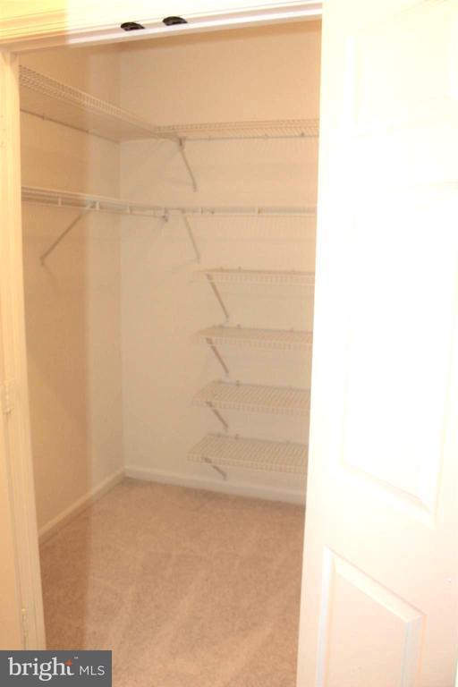 Primary Walk-in Closet - 19375 CYPRESS RIDGE TER #807, LEESBURG