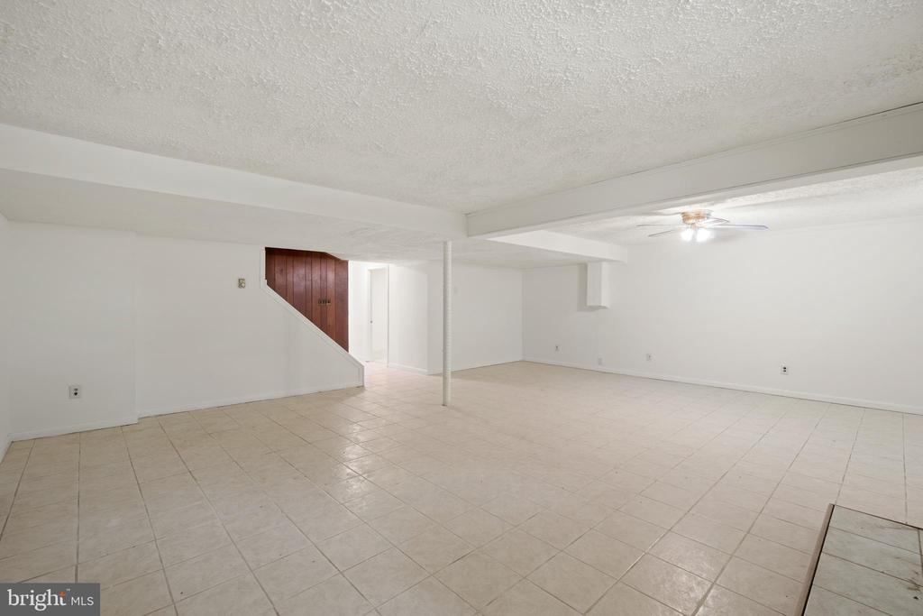 Basement Recreation Room - 781 COURTHOUSE RD, STAFFORD