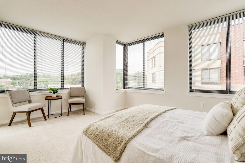 Primary bedroom with brand new carpet. - 2220 FAIRFAX DR #803, ARLINGTON