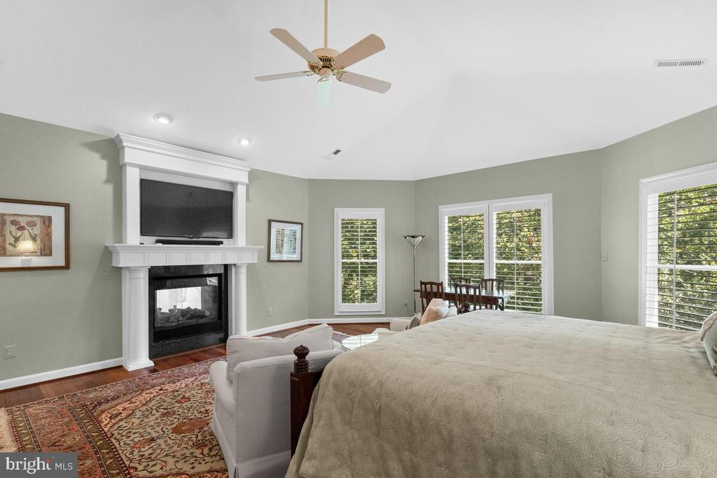 Master: ZEN = fireplace + view - 20260 ISLAND VIEW CT, STERLING