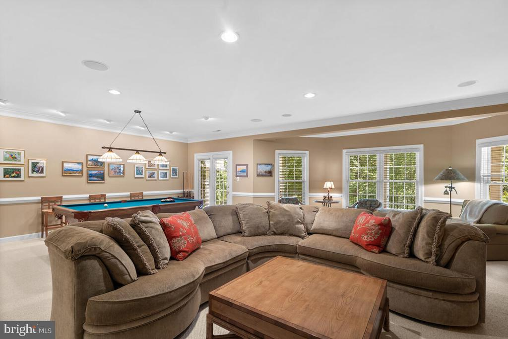 Lower Level with nice walk-out shade patio - 20260 ISLAND VIEW CT, STERLING