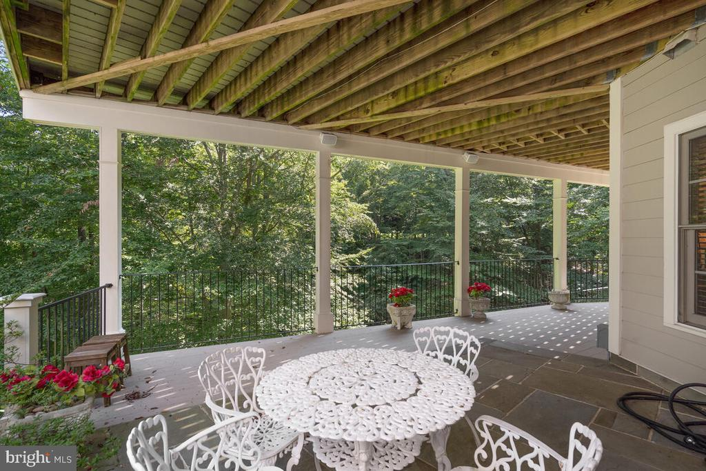 Lower Level: Extra outdoor space w green screen - 20260 ISLAND VIEW CT, STERLING
