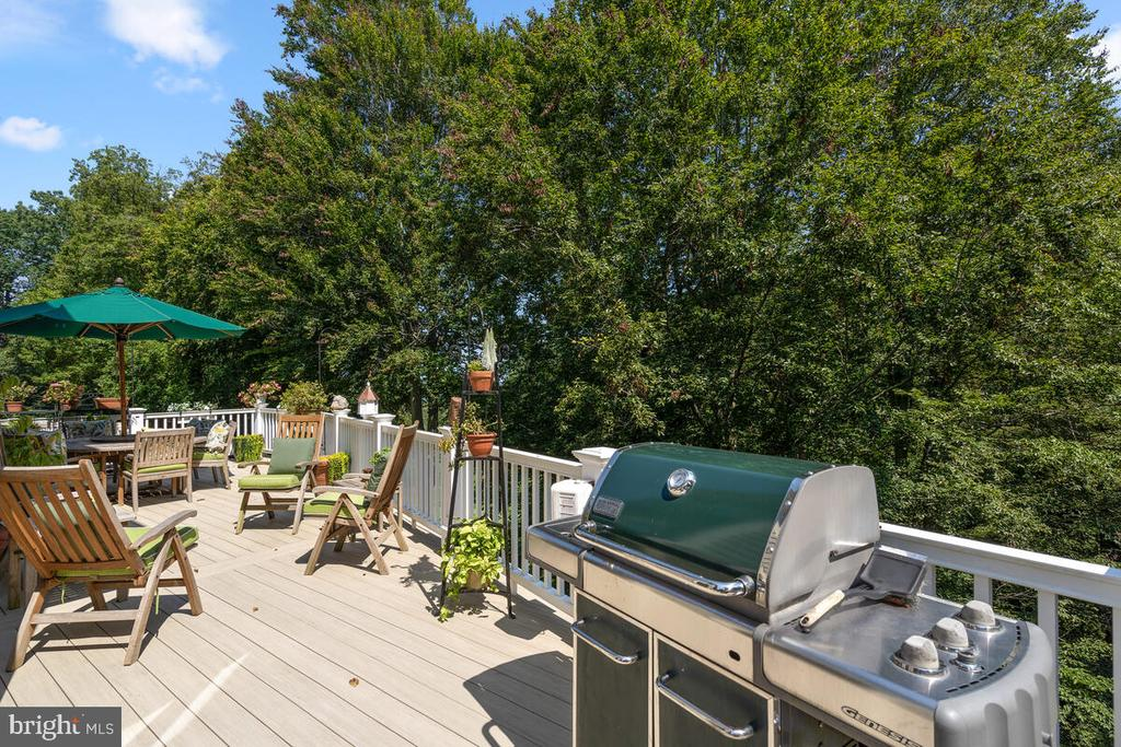 Overlook treetops, fairways, & River all year long - 20260 ISLAND VIEW CT, STERLING