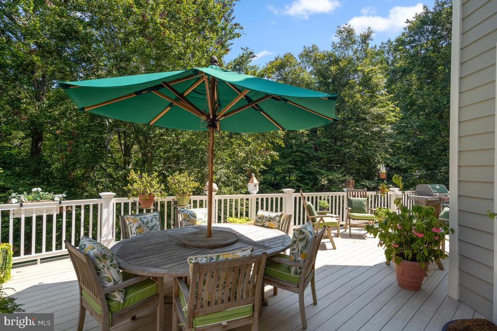 Main-level walk-out Deck - 20260 ISLAND VIEW CT, STERLING