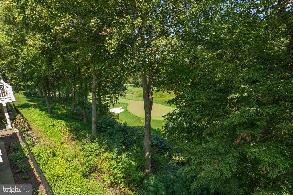 View: Green #6 & Tee #7 of the River Course + - 20260 ISLAND VIEW CT, STERLING
