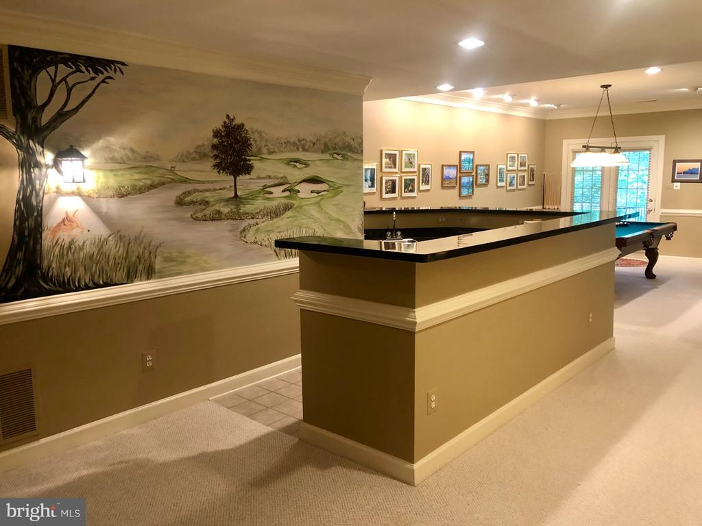 Lower Level: complete with hand-painted mural - 20260 ISLAND VIEW CT, STERLING