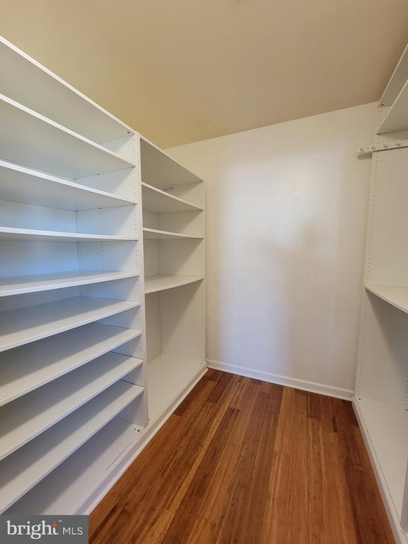 View into 1st Walk-in Closet. - 25452 CROSSFIELD, CHANTILLY