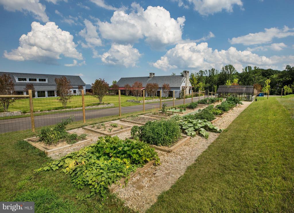 Community - 1470 MEADOWLARK GLEN RD, DUMFRIES