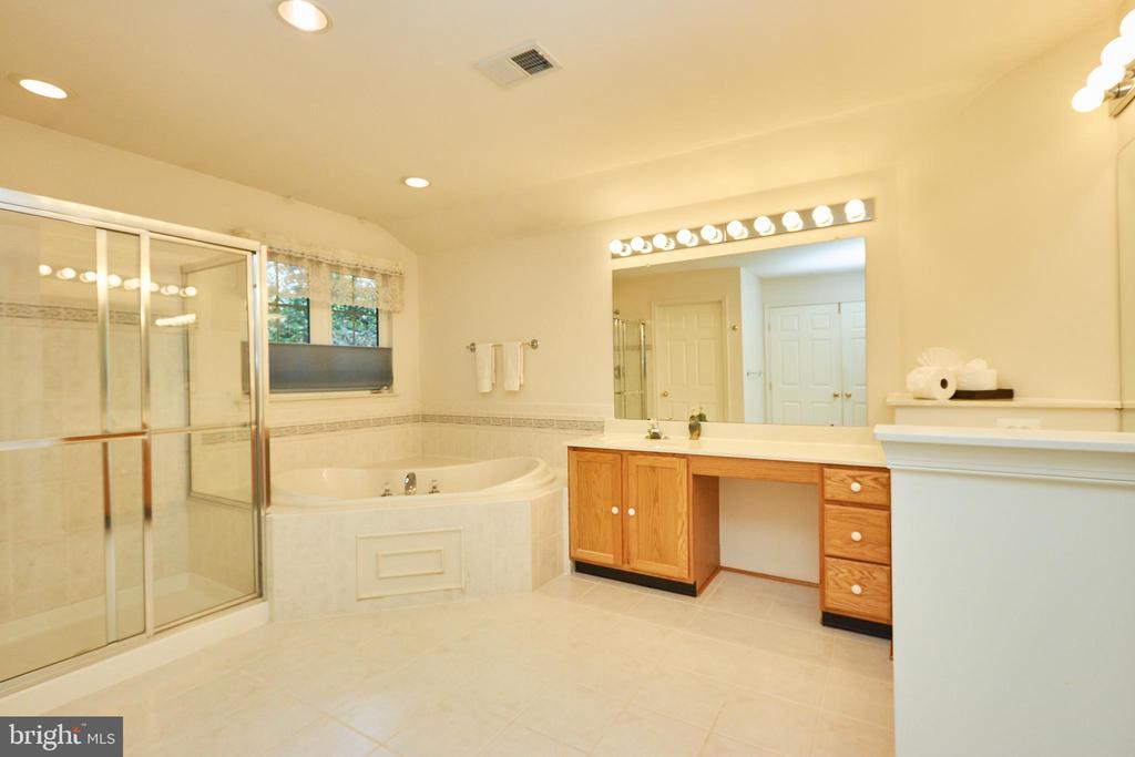 Master bathroom - 619 BRECKENRIDGE WAY, SHENANDOAH JUNCTION