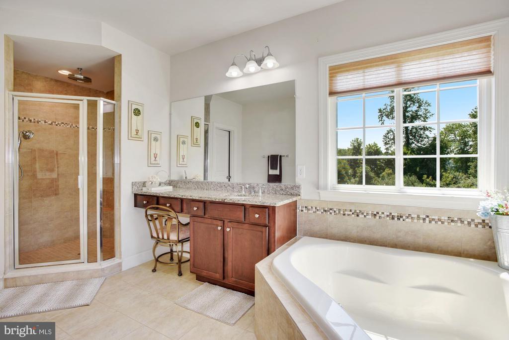 Lavish En Suite Primary Bathroom - 41192 BLACK BRANCH PKWY, LEESBURG
