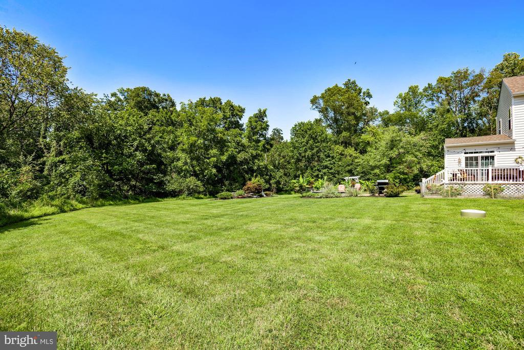 Backyard Surrounded by 100 Acre Wooded Conservancy - 41192 BLACK BRANCH PKWY, LEESBURG
