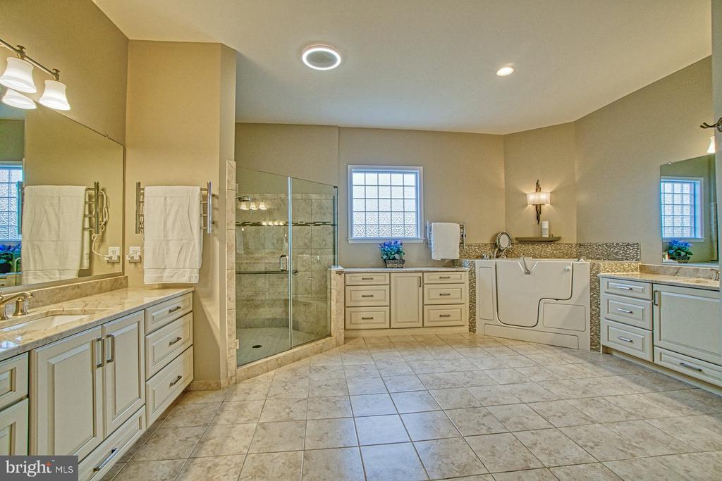 Owner's bathroom - 16604 FOX CHASE CT, LEESBURG