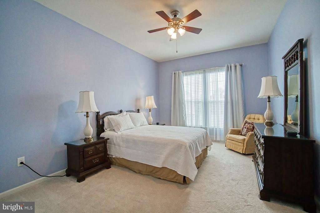 Third bedroom on main level - 16604 FOX CHASE CT, LEESBURG