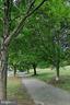 Jogging trails - 6512 TRASK TER, ALEXANDRIA