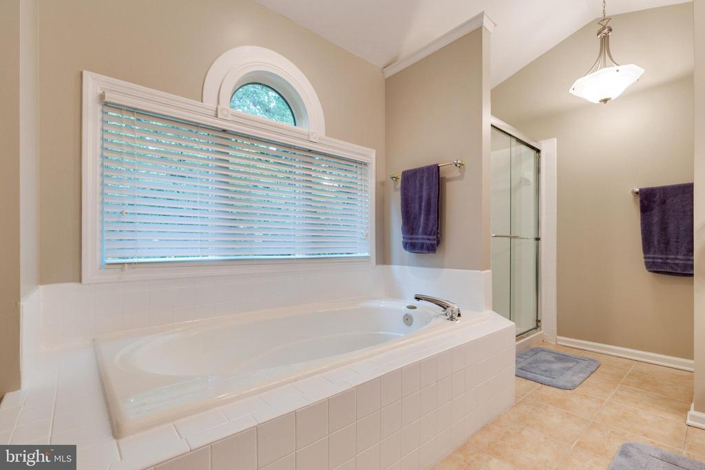 Soaking Tub and separate shower - 15697 THISTLE CT, DUMFRIES