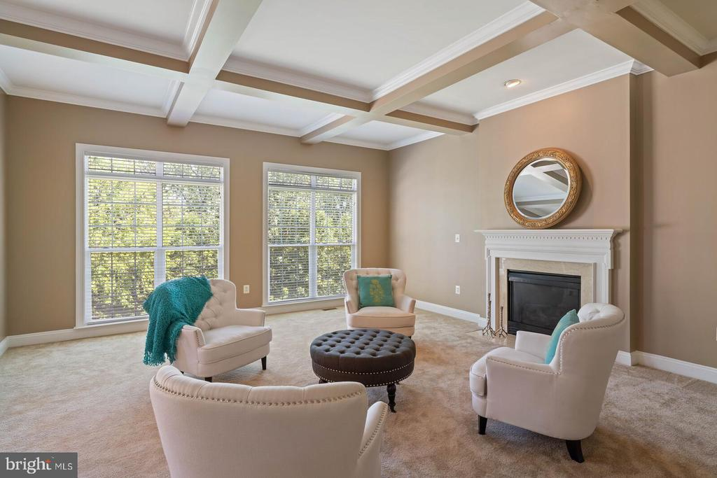 Coffered Ceiling and Gas Fireplace - 22554 FOREST RUN DR, ASHBURN