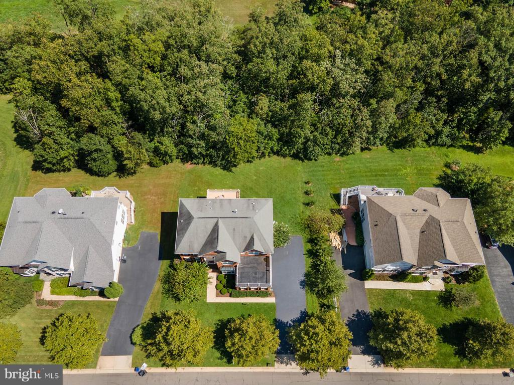 Huge 1/2 acre lot (only 1/3 is cleared) - 22554 FOREST RUN DR, ASHBURN