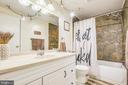 Hall bath, gorgeous custom tile - 12400 TOLL HOUSE RD, SPOTSYLVANIA