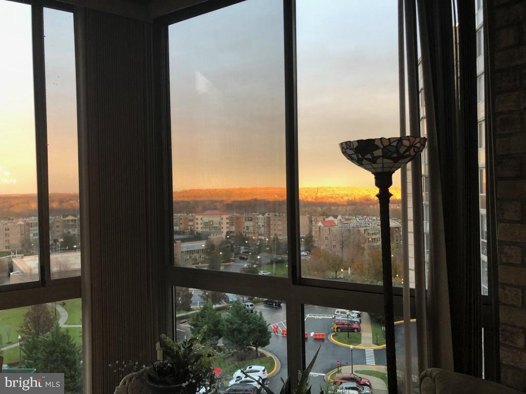 Great way to end a day with sunrm view of  sunset - 19375 CYPRESS RIDGE TER #711, LEESBURG