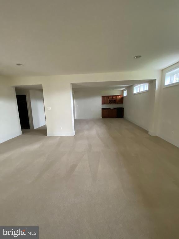 Lower Level Rec Room - 43513 STARGELL TER, LEESBURG