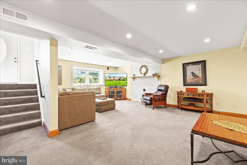 Spacious Rec Room w/Spot for Wood or Pellet  Stove - 37872 CHARLES TOWN PIKE, HILLSBORO