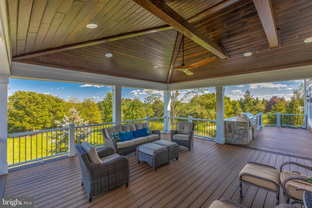 Outdoor Entertaining and Built-in Grill - 16302 HUNTER PL, LEESBURG