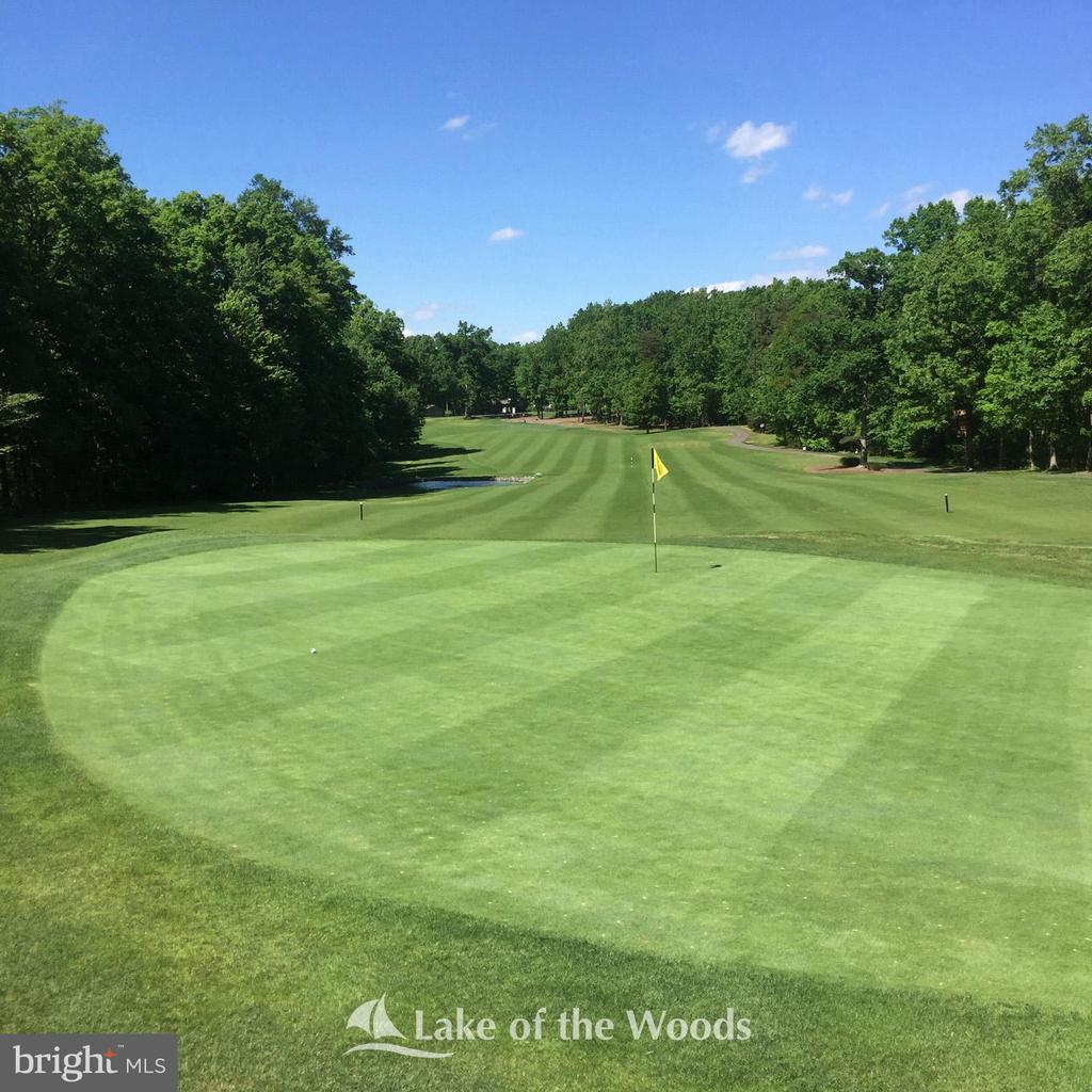 Well maintained golf course - 110 CUMBERLAND CIR, LOCUST GROVE