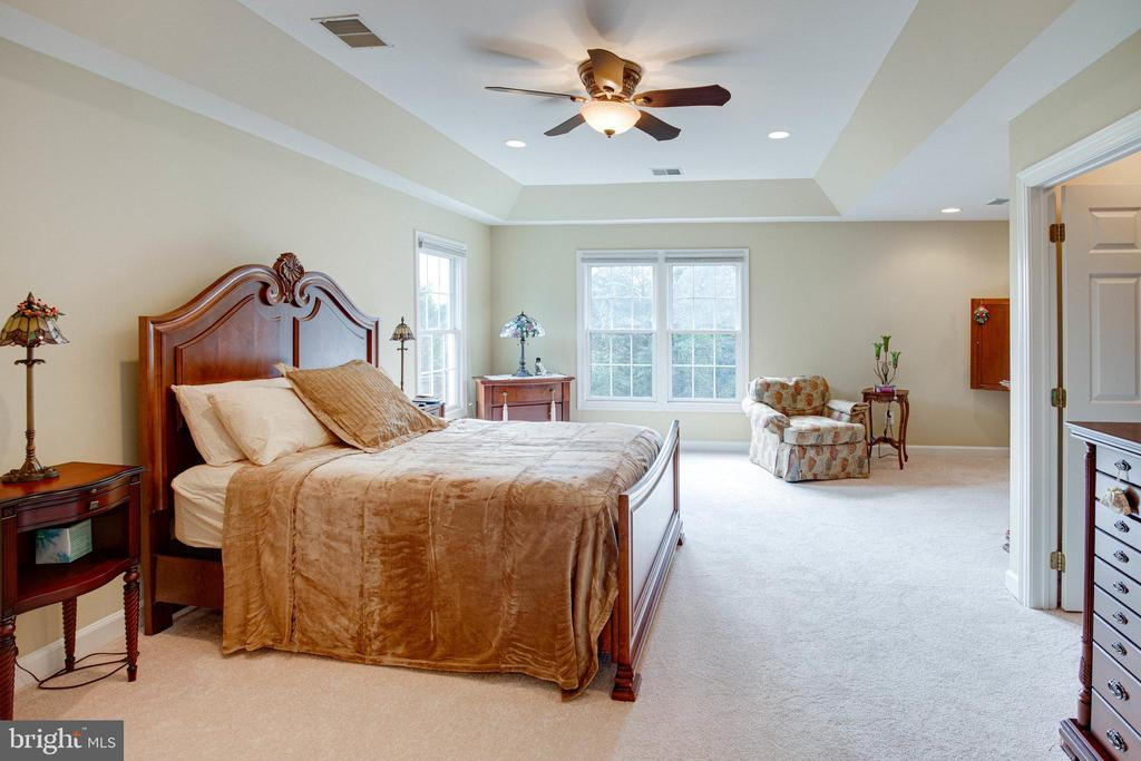 Master Bedroom Suite - 25891 MCKINZIE LN, CHANTILLY