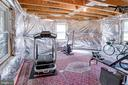 Unfinished 5th bedroom serves as a gym - 25891 MCKINZIE LN, CHANTILLY