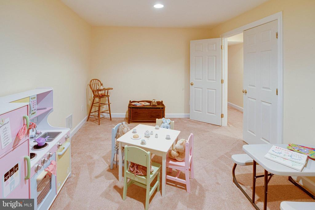 Lower Level Den can be anything you need - 25891 MCKINZIE LN, CHANTILLY